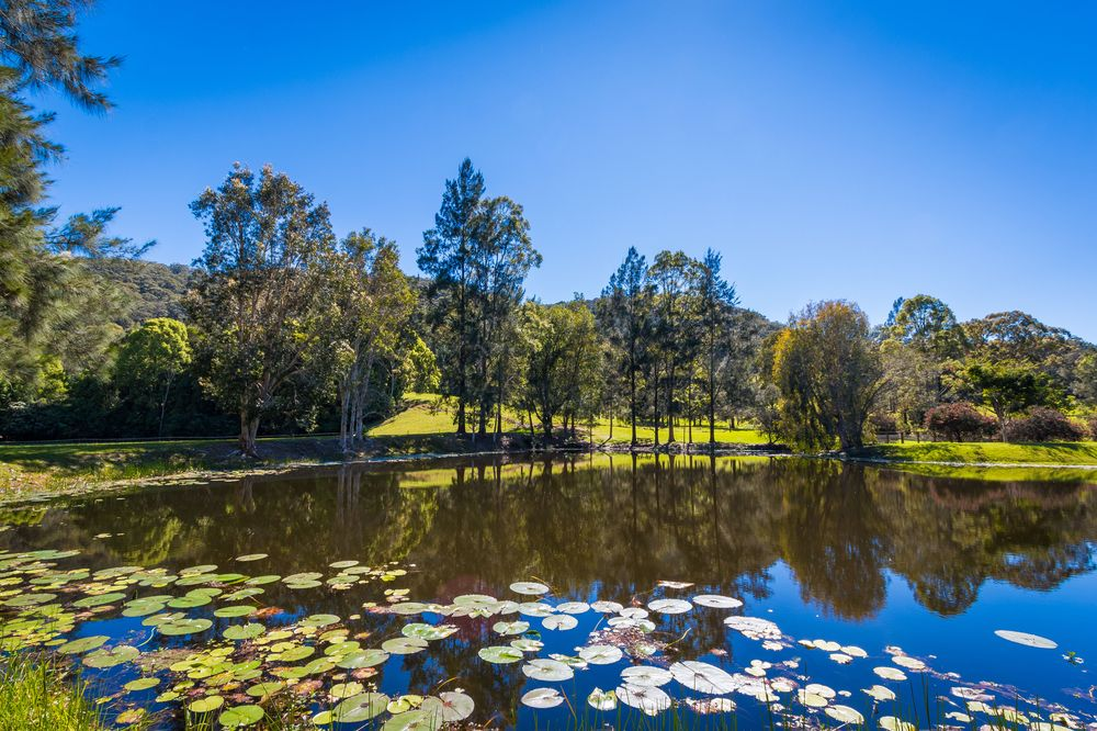 Lake | Friday Creek Retreat | Romantic Getaway Coffs Harbour