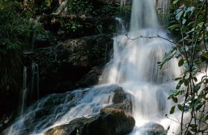 Bangalore Falls | Coffs Harbour Hinterland