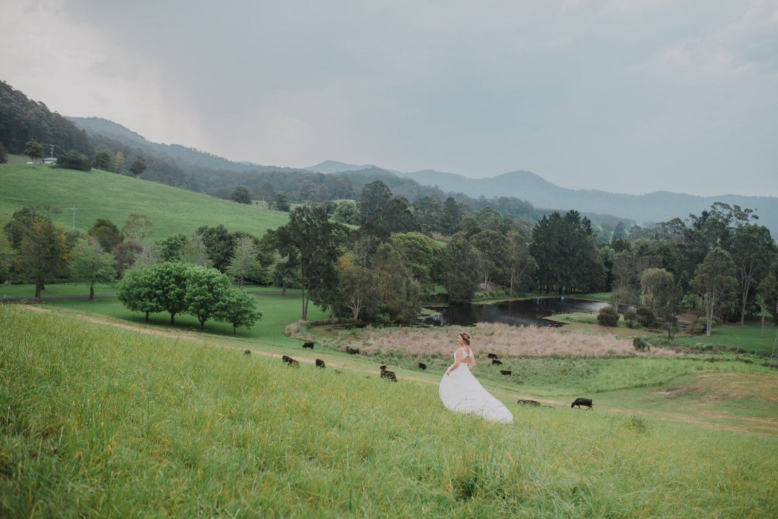 Friday Creek Retreat Bride in field Country Wedding Coffs Harbour
