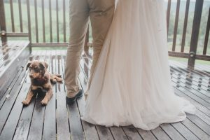 Friday Creek Retreat Pet Friendly Wedding Venue