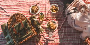 Picnic in Vineyard Coffs Harbour Accommodation
